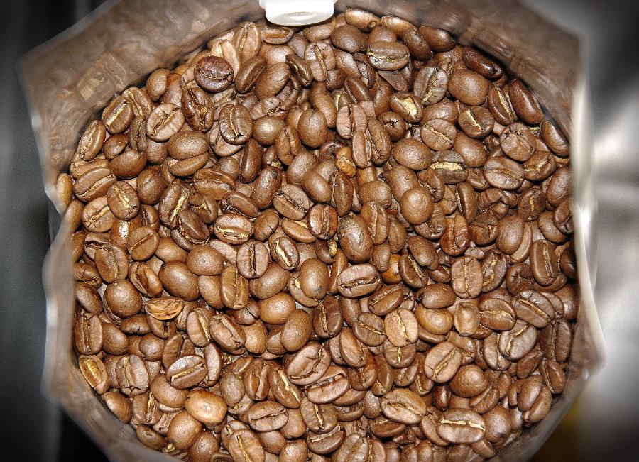 goriziana grand cru beans