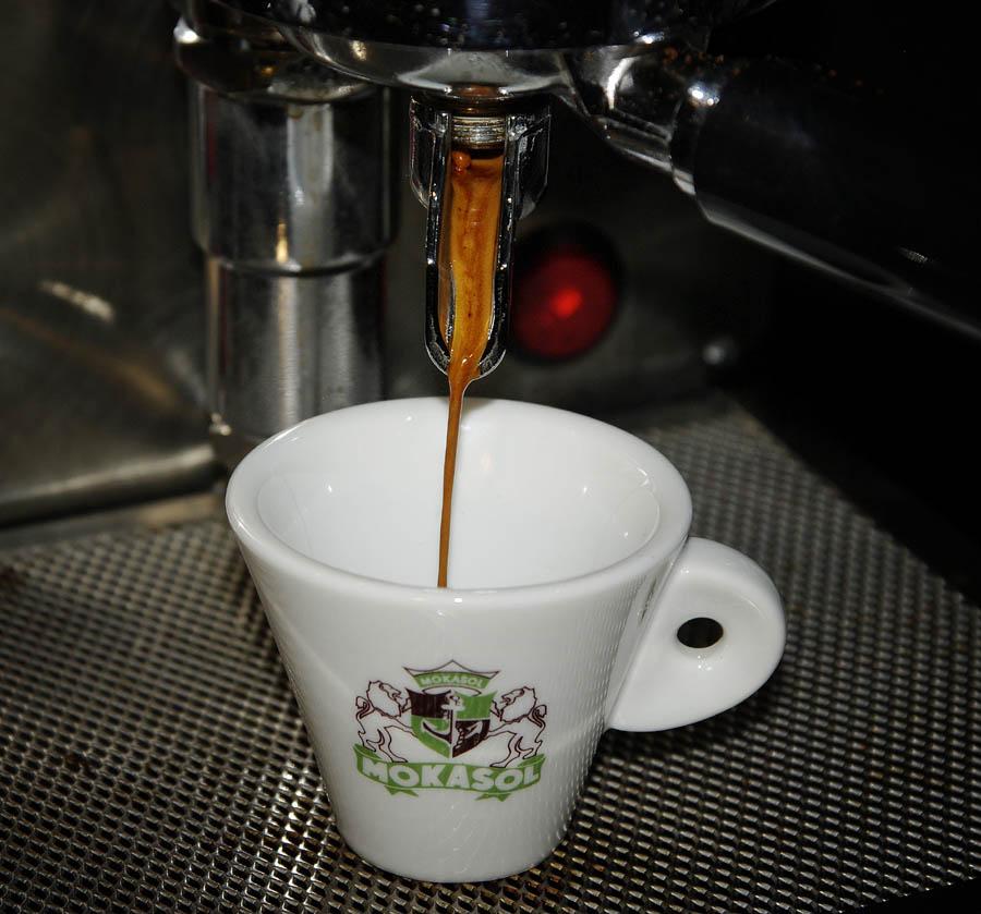 mokasol honduras brew